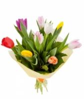 11 разноцветных тюльпанов Состав букета: тюльпан разноцветный- 11 шт Оформление: бумага Размер: 50 см