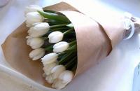 15 белых тюльпанов Состав букета: тюльпан белый- 15 шт. Оформление: бумага флористическая Размер: 40 см