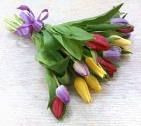 15 разноцветных тюльпанов Состав букета: тюльпан разноцветный- 15 шт Оформление: лента Размер: 40 см