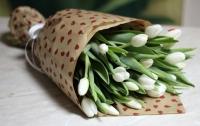 17 белых тюльпанов Состав букета: тюльпан- 17 шт Оформление: бумага флористическая Размер: 50 см