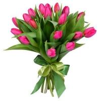 19 розовых тюльпанов Состав букета: тюльпан розовый- 19 шт.