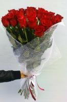 23 розы Freedom