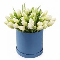 39 тюльпанов в коробке