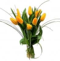 9 желтых тюльпанов Состав букета: тюльпан желтый- 9 шт, зелень. Возможна разнообразная цветовая гамма.