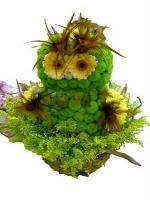 Сова Состав: хризантема Филин Грин- 20 веток, мини гербера- 2 шт, флористический декор, корзинка. Размер: 40 см.
