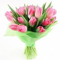 Букет 19 розовых тюльпанов Состав букета: тюльпаны розовые- 17 шт Оформление: флизелин Размер: 50 см