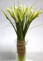 Букет 21 белая калла Состав букета: калла белая - 21 шт декоративная зелень Размер: 80 см Оформление: мешковина