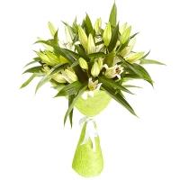 Букет 9 белых лилий Состав букета: лилия- 9 веток Размер: 60 см Оформление: зеленая сезаль