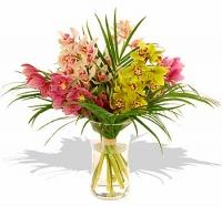 Кораллы Состав букета: орхидея разная- 5 разноцветных веток, зелень. Очаровательные и нежные орхидеи- любимые цветы женщин. Такой букет приведет в восторг любимую женщину, подарит ей радость. Орхидеи надолго сохранят свою свежесть, радуя Вас своей красотой. Ваза в стоимость букета не входит, ее Вы можете приобрести отдельно.