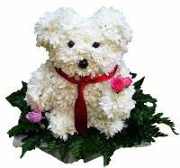 Собачка Состав: хризантема- 55 шт, флористический декор. Размер: 40 см.