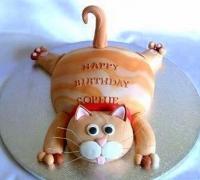 Торт Кот