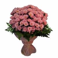 Розовый фламинго  Состав: хризантема розовая-15 шт, зелень. Ничего так не порадует любимого человека, как этот  нежный букет хризантем.