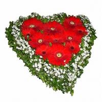 Страстная любовь Состав: гербера красная- 11 шт, гипсофила, зелень. По Вашему усмотрению, цветовая гамма, а также цветочный состав композиции может изменяться.