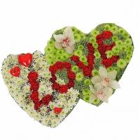 Два любящих сердца Состав:роза красная- 29 шт, орхидея- 3 шт, хризантема белая- 15 шт, хризантема Филин грин- 15 шт, гипсофила. По Вашему усмотрению, цветовая гамма, а также цветочный состав композиции может изменяться.