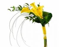 Золото надежд Состав букета: калла- 5 шт, зелень. Желтый цвет