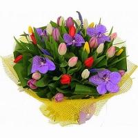 Ягодка моя Состав букета: тюльпан разноцветный- 29 шт, орхидея- 5 шт, флористическая зелень. Оригинальный букетик к Дню рождения любимой.