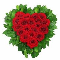 Любимому человеку Состав: роза красная- 19 шт, зелень.