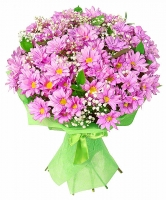 Для любимой Состав букета: хризантема- 11 шт, зелень, гипсофила. Подарите любимой очаровательный букет ромашковых хризантем, подарив свою любовь и ласку.