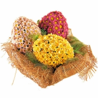 Пасхальные яйца Состав: хризантема- 30 шт, корзинка.