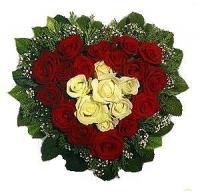 Багровое сердце Состав: роза красная- 16 шт, роза белая- 7 шт, гипсофила, зелень.