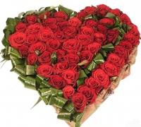 Влюбленное сердце Состав: роза- 51 шт, аспидистра, оазис.