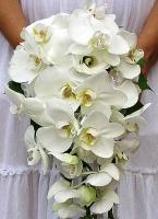 Букет невесты № 261