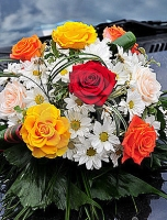 Композиция 02 Состав: роза разноцветная- 11 шт, хризантема- 5 веток, зелень.