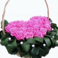 Розовый бархат Состав: роза- 27 шт, зелень, корзина.
