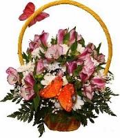 Формула любви Состав корзины: альстромерия- 5 шт, хризантема- 2 ветки, гипсофила, зелень, корзина.