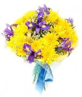 Букет солнечный Состав букета: хризантема- 5 веток, ирис- 9 шт, гипсофила.