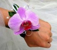 Орхидея лиловая Состав: орхидея фаленопсис- 1 шт, зелень, декор.