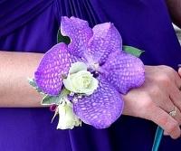 Ванда голубая Состав: орхидея Ванда- 1 шт, роза кустовая- 1 ветка, зелень.