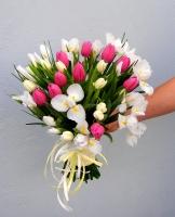 Северное сияние Состав букета: тюльпан розовый и белый- 19 шт, ирис белый- 20 шт. Размер: 35 х 50 см. Оформление: лента флористическая.