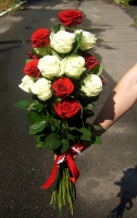 Тепло солнца Состав букета: роза белая- 10 шт, роза красная- 11 шт. Размер: 60 см.