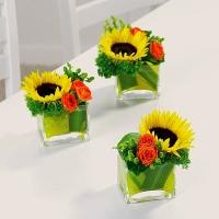 Улыбка солнца Состав: подсолнух- 1 шт, роза кустовая- 1 ветка, гиперикум- 1 ветка, трахелиум, ваза стеклянная. Размер: 20 см.