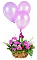 Цветочный микс Состав: тюльпан- 10 шт, гербера- 7 шт, роза- 10 шт, гвоздика- 10 шт, зелень, корзина, шарики, наполненные гелием.