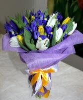Весенний микс Состав букета: тюльпан желтый- 8 шт, тюльпан белый- 9 шт, ирис синий- 10 шт. Оформление: флористический флизелин. Размер: 50 см.