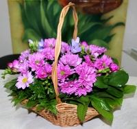 Нежное лукошко Состав: хризантема- 5 шт, фрезия- 9 шт, зелень, корзина. Размер: 30 см. Прекрасная корзина с цветами нежных оттенков- лучший подарок к любому торжеству.