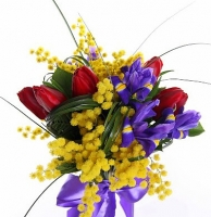 Душистая мимоза Состав букета: ирис синий- 6 шт, тюльпан- 5, мимоза, зелень. Оформление: лента флористическая. Размер: 50 см.