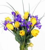 Весенняя радуга Состав букета: ирис синий- 7 шт, тюльпан- 8 шт, зелень. Оформление: лента флористическая. Размер: 50 см.
