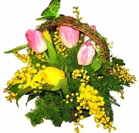 Мимоза в корзинке Состав: тюльпан- 9 шт, мимоза, корзина, зелень, декор. Размер: 25 см.