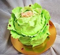 Торт Малыш в капусте Вес торта: 3 кг Заказывать торт необходимо за 3- 4 дня до момента доставки! Доставка торта возможна только по Киеву и области. Выберите начинку для торта: ФруктовыйНежный ванильный бисквит, пропитанный сахарным сиропом. Крем из натуральных, взбитых сливок с кусочками фруктов (персик, киви, ананас, груша, вишня, ягоды по сезону). Шоколадно-вишневыйШоколадный бисквит, пропитанный вишневым сиропом (по желанию с коньяком), взбитые сливки с вишней и кусочками шоколада. СметанникШоколадный и ванильный бисквит, сметанный крем (по желанию с добавлением орехов и кусочками шоколада). ЛакомкаТрадиционный белый бисквит, пропитанные карамельным сиропом, нежный крем из взбитых сливок с добавлением сгущенки-ириски с вишней. Птичье молоко Нежный бисквит(ванильный или шоколадный, на выбор), пропитанный ванильным сиропом. Крем— суфле птичье молоко скусочками белого ичерного шоколада. Золотой ключик Ореховый бисквит, пропитанный кофейным сиропом, крем на основе вареной сгущенки с жаренными грецкими орехами. ТрюфельныйШоколадный бисквит с кусочками шоколада, ромовая пропитка, шоколадно трюфельный крем с кусочками шоколада. Медовик Тонкие медовые коржи, сметанный крем, чернослив, курага игрецкий орех. (Можно без сухофруктов или на выбор).