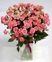 Кустовые розы Грация Состав: роза кустовая розовая- 19 веток Размер: 50 см Оформление: лента флористическая