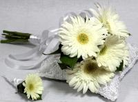 Букет невесты № 194 Состав букета:  гербера - 5 шт Букет выполнен на своих стеблях Бутоньерка для жениха в подарок!