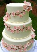 Торт Сакура цветущая