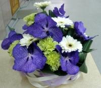 Улыбка ангела Состав: орхидея Ванда- 7 шт гербера- 6 шт гвоздика- 7 шт декоративная зелень Размер: 28 см