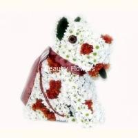 Пес Барбос Состав: хризантема-40 веток, флористический декор. Размер: 35 см.