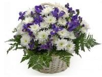 Корзина Свежесть Состав корзины: хризантема- 7 веток ирис синий- 10 шт декоративная зелень корзина