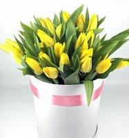 Желтые тюльпаны в коробке Состав: тюльпан желтый- 25 шт коробка флористическая