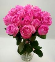 Утренняя радость Состав букета:  роза розовая- 19 шт Оформление: лента Размер: 60 см